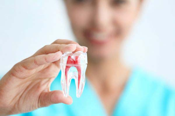 General Dentistry: Why Regular Dental Checkups Are So Important